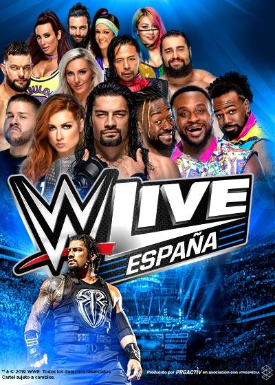 WWE 2017
